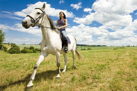 Las rutas a caballo, un placer por descubrir