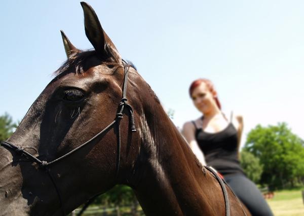 5 consejos a la hora de montar a caballo