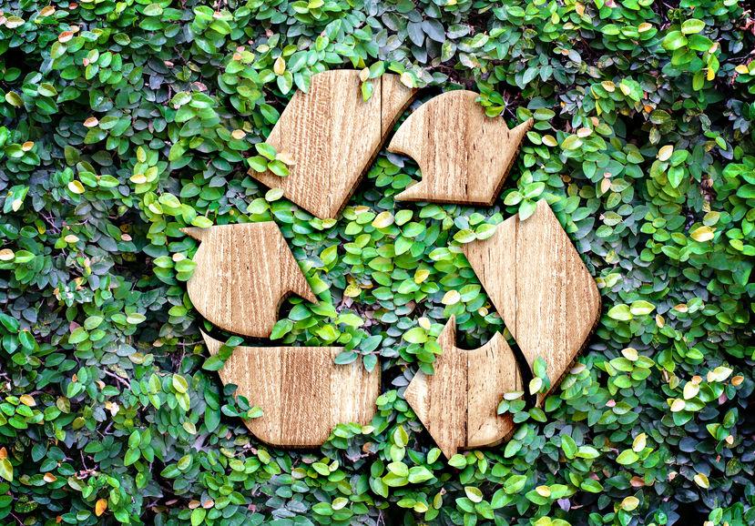 Consejos útiles para el cuidado del medio ambiente